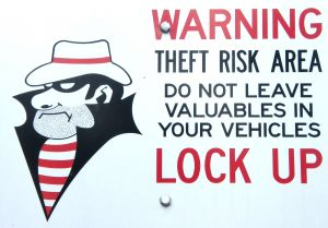 Theft Warning