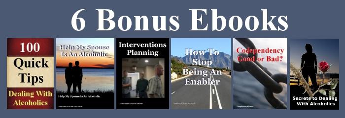 6 bonus ebooks verticle
